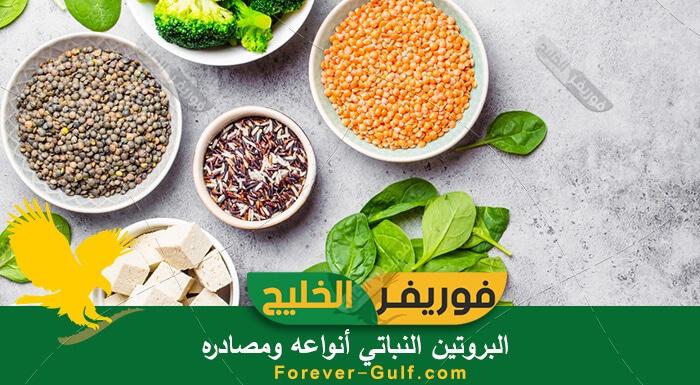البروتين النباتي أنواعه ومصادره